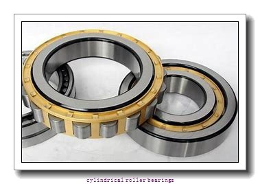 0.669 Inch   17 Millimeter x 1.85 Inch   47 Millimeter x 0.551 Inch   14 Millimeter  CONSOLIDATED BEARING N-303  Cylindrical Roller Bearings