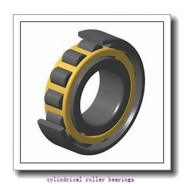 3.74 Inch | 95 Millimeter x 6.693 Inch | 170 Millimeter x 1.26 Inch | 32 Millimeter  CONSOLIDATED BEARING NU-219E C/3  Cylindrical Roller Bearings