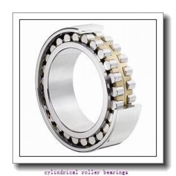 3.74 Inch | 95 Millimeter x 6.693 Inch | 170 Millimeter x 1.26 Inch | 32 Millimeter  CONSOLIDATED BEARING NU-219 M  Cylindrical Roller Bearings