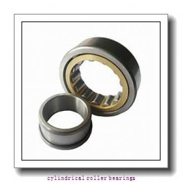 0.984 Inch | 25 Millimeter x 2.441 Inch | 62 Millimeter x 0.669 Inch | 17 Millimeter  CONSOLIDATED BEARING N-305 C/3  Cylindrical Roller Bearings