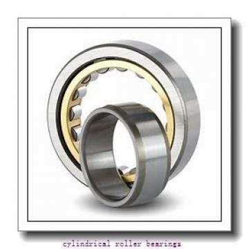 1.969 Inch   50 Millimeter x 3.15 Inch   80 Millimeter x 0.63 Inch   16 Millimeter  CONSOLIDATED BEARING NU-1010 M C/3  Cylindrical Roller Bearings
