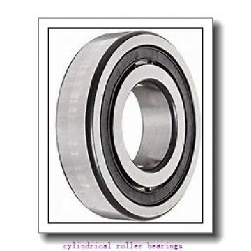 8.661 Inch | 220 Millimeter x 15.748 Inch | 400 Millimeter x 2.559 Inch | 65 Millimeter  CONSOLIDATED BEARING N-244 M C/3  Cylindrical Roller Bearings